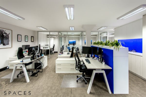 Transformed Brain Partners office space with white walls and ceilings creating light and airy space