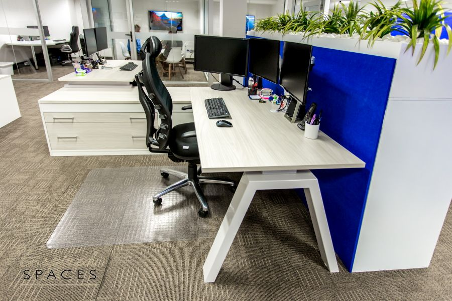 Blue and blonde timber office design
