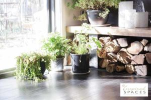 Corner of a room next to a window with pot plants and firewood stack