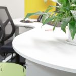 Office-Design-North-Sydney-531