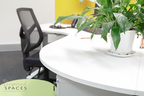 Office-Design-North-Sydney-531