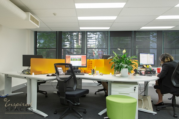 Office-design-north-sydney-1