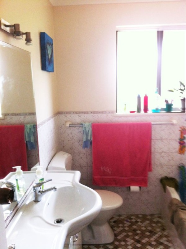 Bathroom Makeover Before Shot 1
