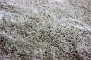 Close up of carpet style Frieze